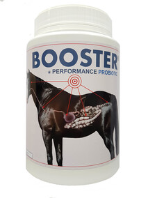 BOOSTER  - PERFORMANCE PROBIOTIC/Enzyme (1kg. 2.5kg. 5kg. 10kg)